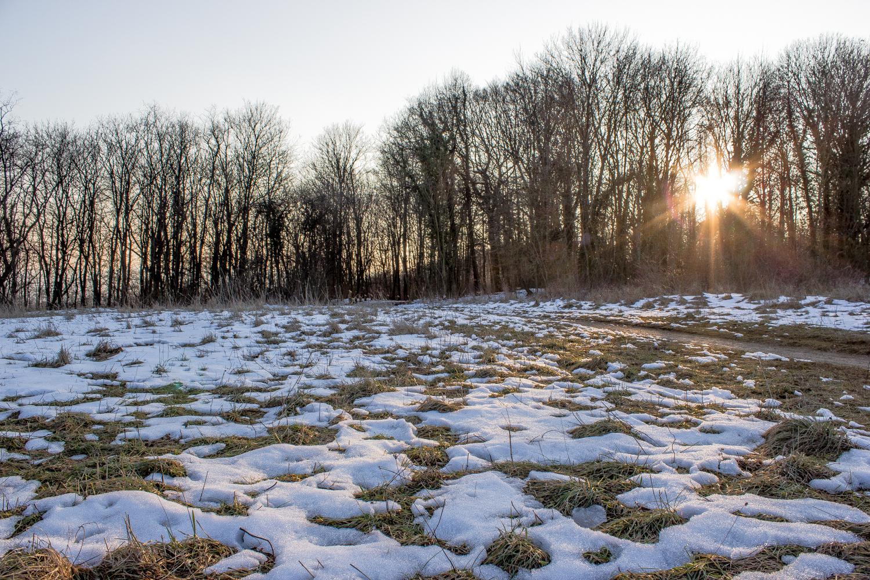 Coucher de soleil et plaques de neige - Plateau de Malzéville (54) 53294123p1