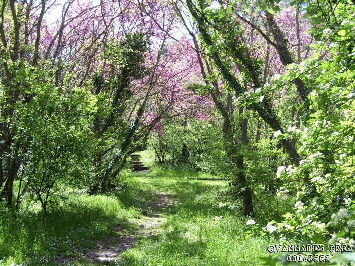 """La Vallée de St Pons """" La Vallée Rose """" à Gemenos Bouches du Rhône ♥♥♥ 53397557"""