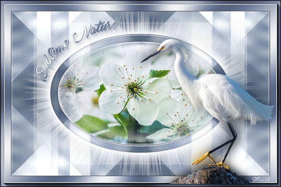 Sublime nature (PSP) 537662sublime