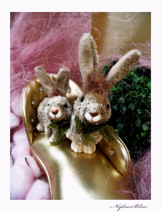 Mini Gene et les petits lapins de Paques.... 537690aDSCF7770