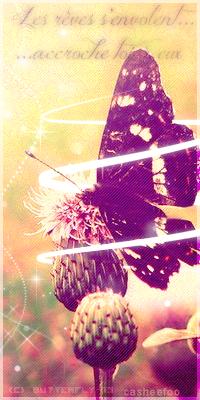 Butterfly Art' [Open 0/1] 537783Avapillon