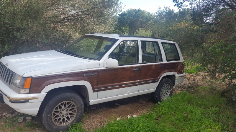 nouveau jeep 54138120160108123534