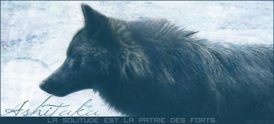 L'hiver s'en vient (libre) - Page 2 543379Ashitaka