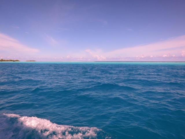 Quelques photos de mes dernières vacances (Maldives) 543822IMG3756