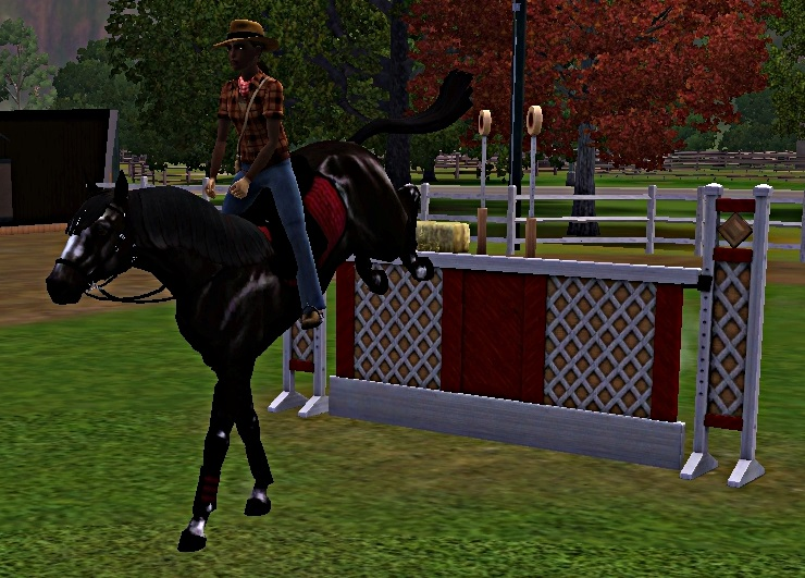 "[Challenge] Teens and Horses ""Sims 3"" - Page 3 550756entrainementausaut2"