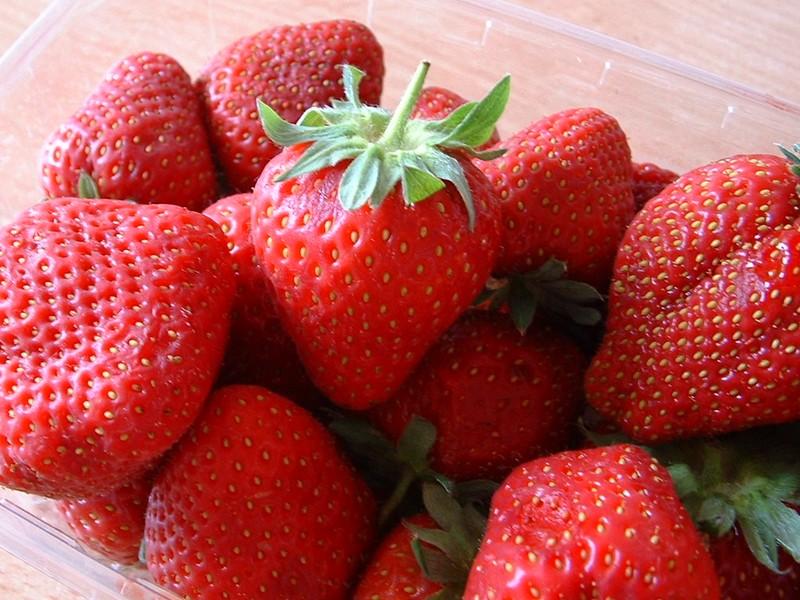 Fleurs,....fruit,.....tout ce qui se mange,...se boit....ou qui vient de la nature.......... - Page 5 551205fraisesjpg