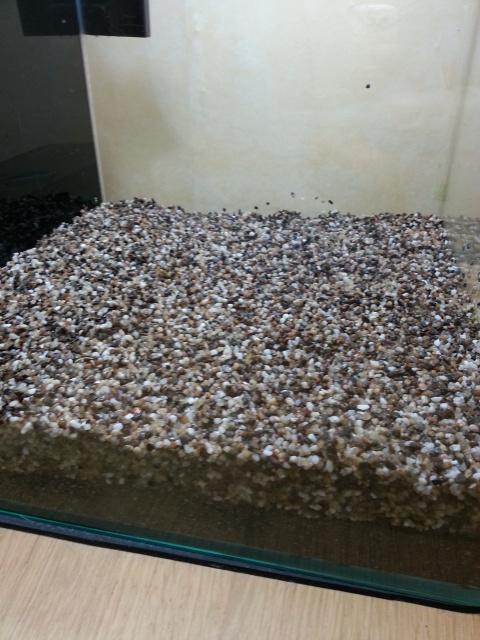 Nouveau Nano 30 litres Walstad, sans engrais, ni filtre! etc 55154320131109115943