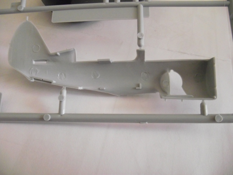 [Heller] Curtiss SBC-4 Helldiver 551574DSCF2194