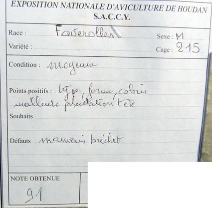 exposition d'aviculture Foire ST MATTHIEU 27 et 28 Septembre 2014 - Page 3 554777P1150756
