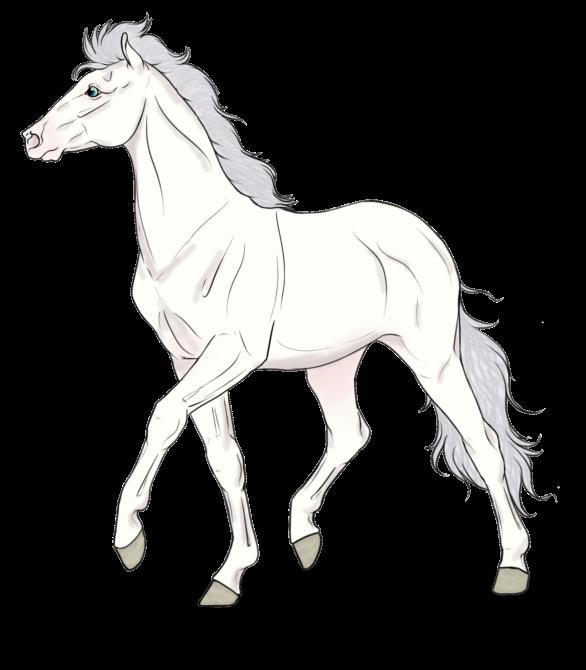 Licorne. Troupeau d'Atlas. 554959Licorne