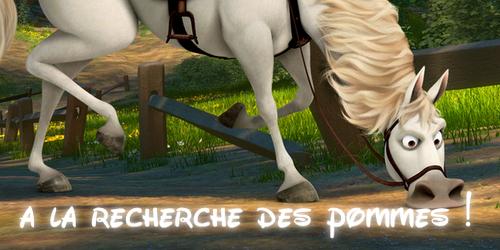 ♧ cadeau pour un cheval o/ 560943signamax