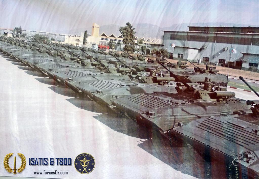 القوات البرية الجزائرية  561881SSSSSS