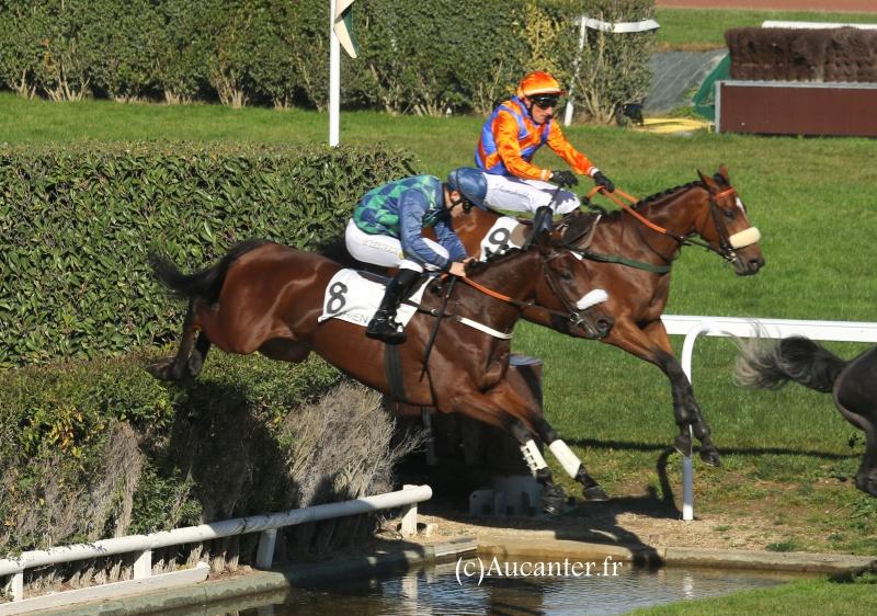 Photos Enghien 22-10-2016 Grand Steeple 5660605J6A9178