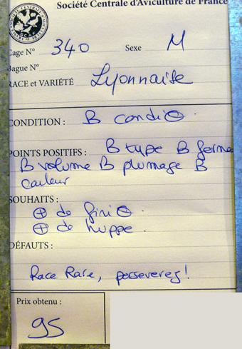 2014 - salon de l'Aviculture de Paris du 22/02/2014 au 02/03/214 - Page 4 566706P1130664