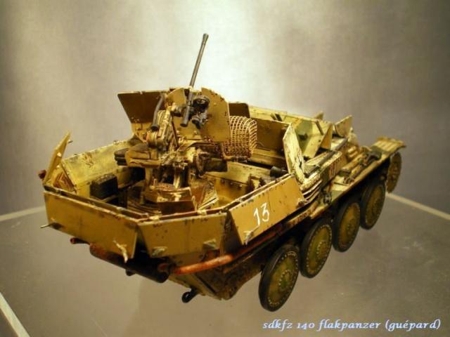 sd.kfz 140 flakpanzer (gépard) maquette Tristar 1/35 - Page 2 567850IMGP3210