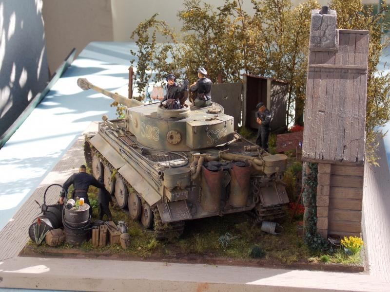 TIGRE S33  avant la bataille de Koursk juillet 43 (Dragon 1/35 dio DIODUMP) - Page 10 569906DSCN4789