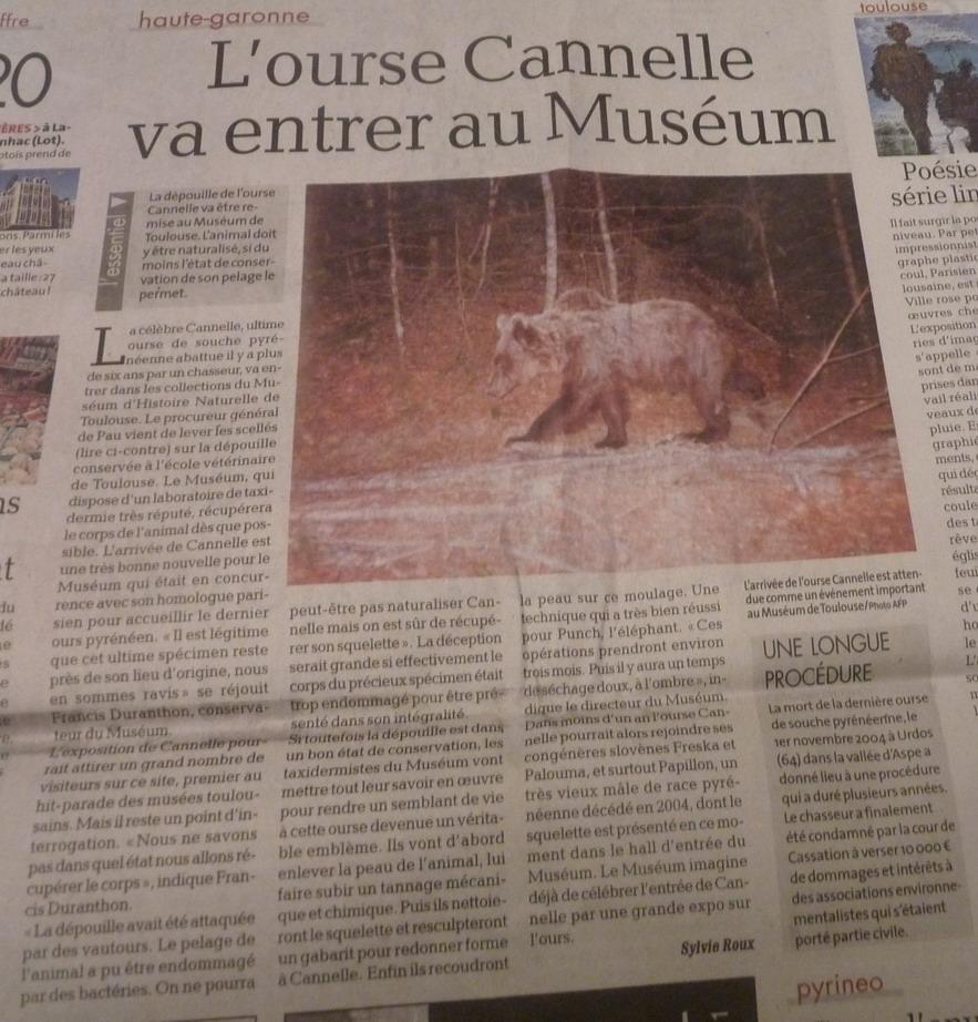 cannelle centenaire  TOULOUSAINE  !!!!!! - Page 3 573772P1190163