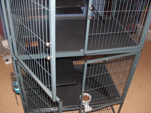 Vends cage nation 2 pour furets (à voir pour rats) 581640HPIM2684