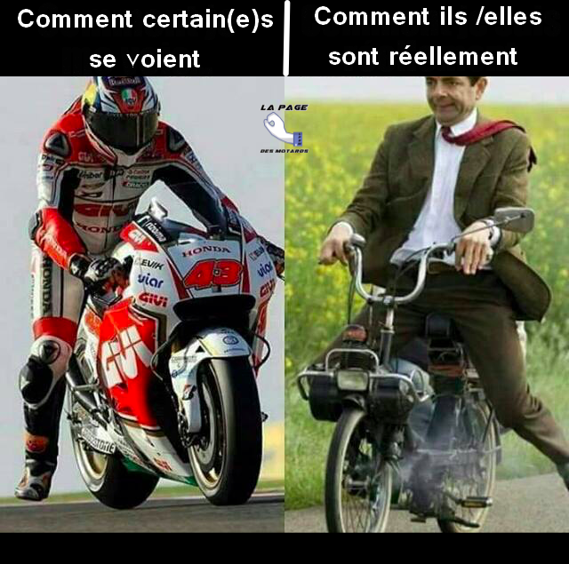 Humour en image du Forum Passion-Harley  ... - Page 21 5817341730881114564006544011581688941326559925874n