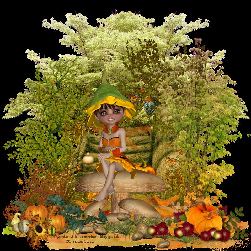 Champignon d'automne Septembre 2016 586627cloclo