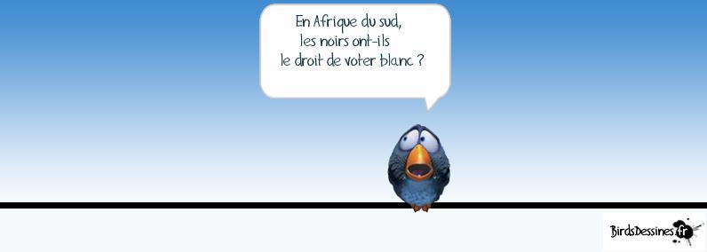 Les Birds Dessinés - Page 2 5900283409