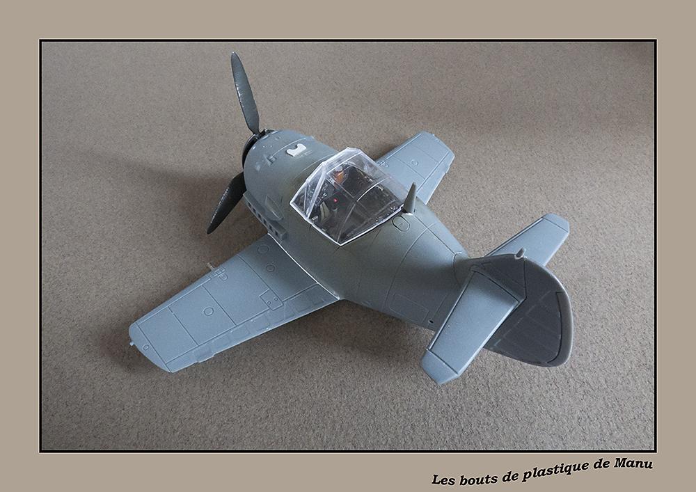 tiger - Bf 109 Tiger Model egg plane-FINI ! 5921466828
