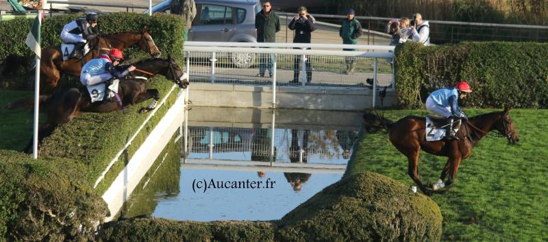 Photos Auteuil 6-11-2016 5933115J6A0660