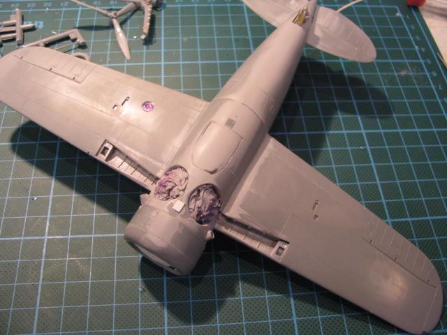 Brewster B-339B Buffalo 1/48 Tamiya.....Terminé! 593464IMG1988