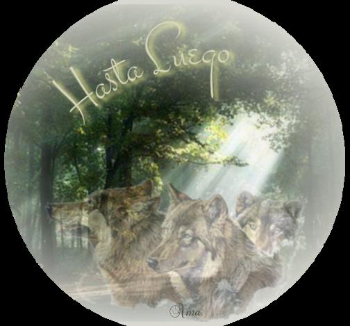 Lobos de Arga, pueblo gallego con una maldicion sus moradores se convierten en lobos cada cien años 595442hastaluego