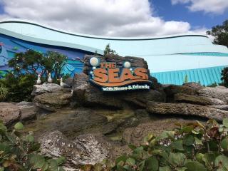 WDW et Universal , mon cadeau pour mes 40 ans .             Beach Club Resort , Animal Kingdom Lodge et Royal Pacific Resort . Octobre 2017  // WDW 2.0 : CBR et RPR du 25/02 au 07/03 /2019 ( résumé ) - Page 2 595652IMG4084