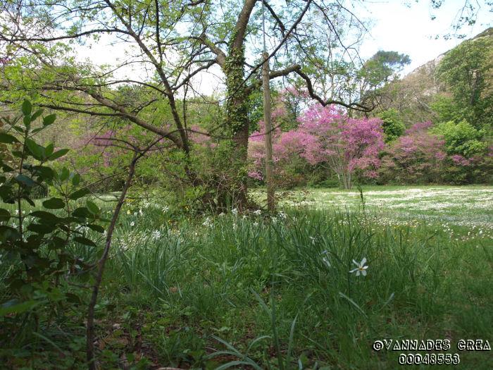 """La Vallée de St Pons """" La Vallée Rose """" à Gemenos Bouches du Rhône ♥♥♥ 60250720"""