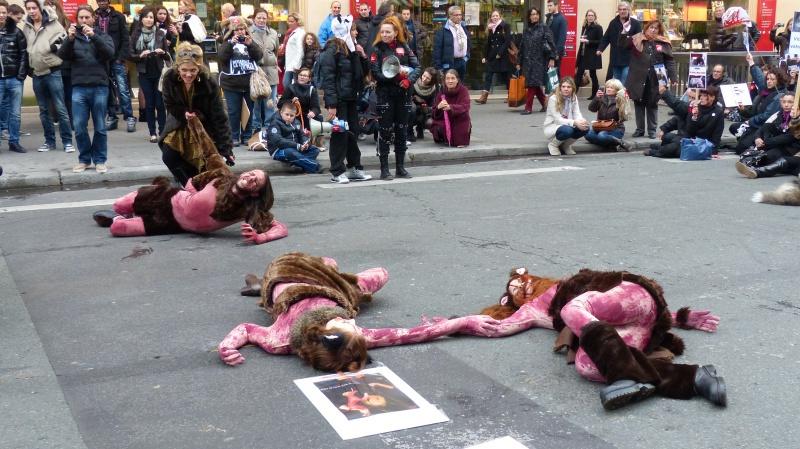 13 - Marche Contre La Fourrure - Paris 24 novembre 2012. 603510P1010468