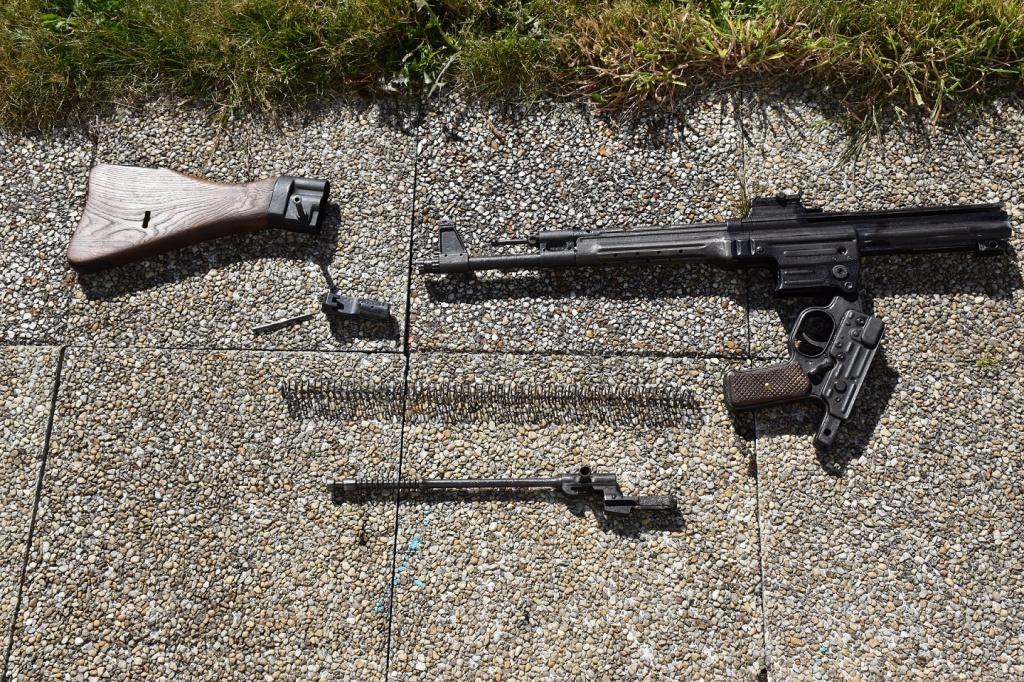 Sturm MP43/1  603581DSC2428
