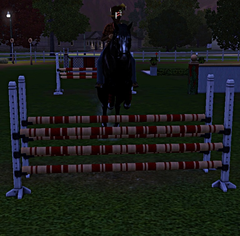 "[Challenge] Teens and Horses ""Sims 3"" - Page 3 604810entrainementausaut6"