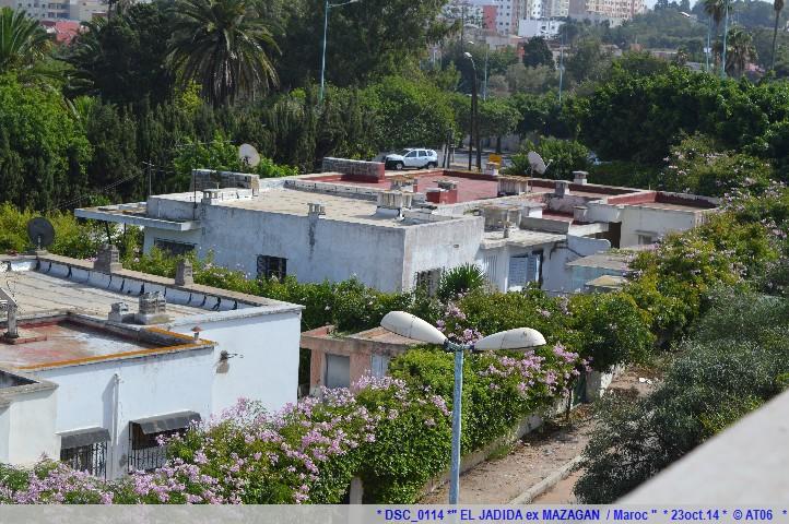 Z06 / C/R MSC.... Poesia 21/10 au 30/10 2014   Gêne Malaga Casablanca Lisbonne Barcelone Marseille 607629DSC0114