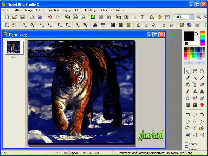 PhotoFiltre Studio X 10.9.2 609984Tigre3