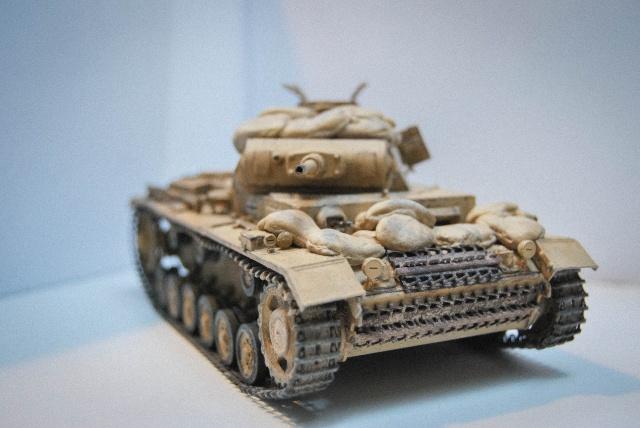 DRAGON - Panzer III J tp (DRAGON) 612198DSC0790