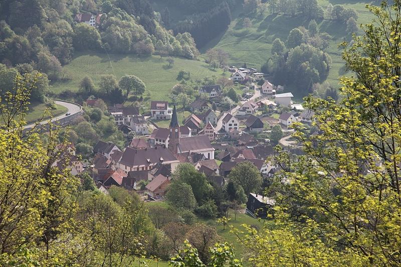 Paysage d'Alsace 615182IMG0011