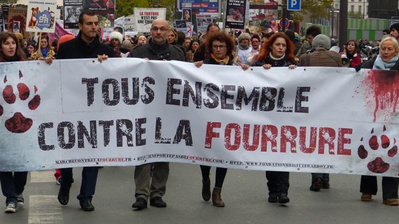 13 - Marche Contre La Fourrure - Paris 24 novembre 2012. 621321P1000800