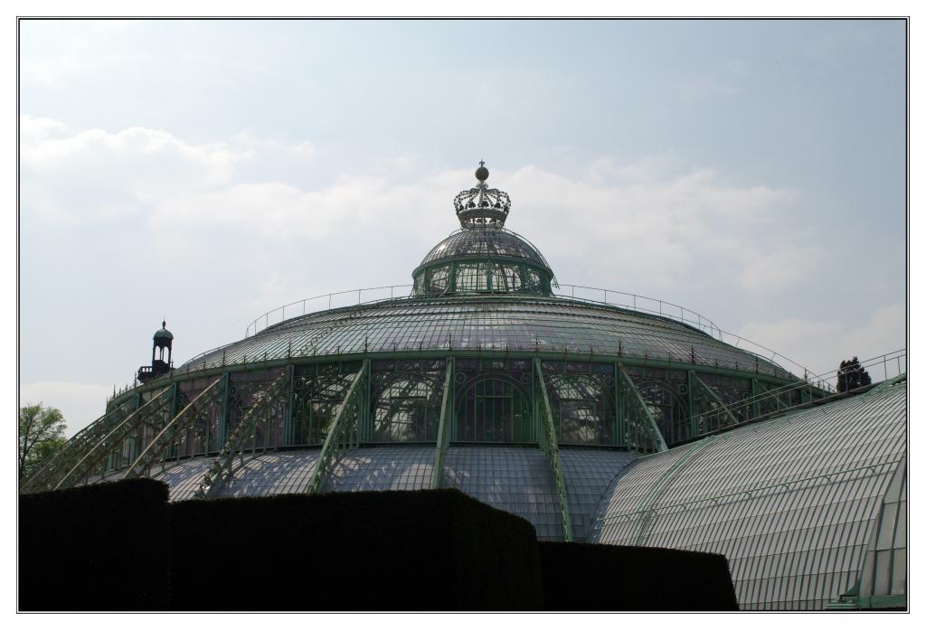 Les serres royales de Laeken 621767IMGP0642a