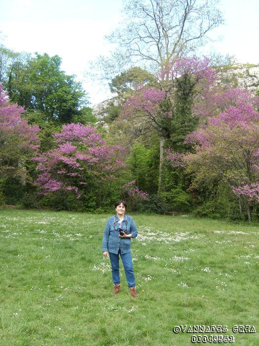 """La Vallée de St Pons """" La Vallée Rose """" à Gemenos Bouches du Rhône ♥♥♥ 6241272"""
