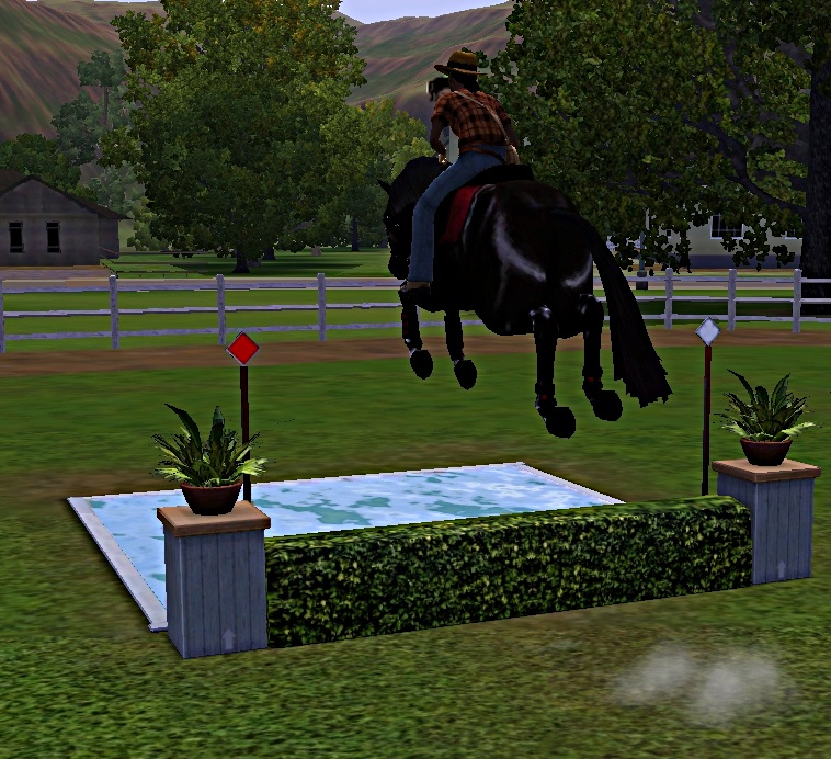 "[Challenge] Teens and Horses ""Sims 3"" - Page 3 624139entrainementausaut7"