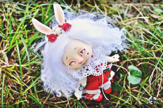 Lychee's Wonderland 625404674