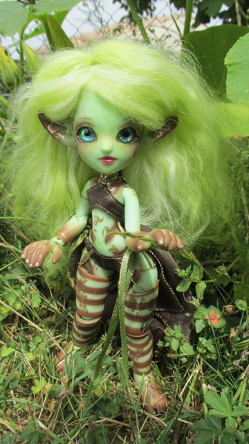 Lychee's Wonderland 630495765