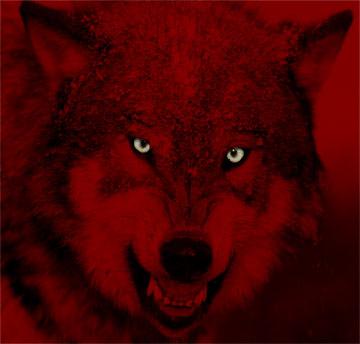 Le Garage de Camu ! - Page 30 633136Red_Wolf
