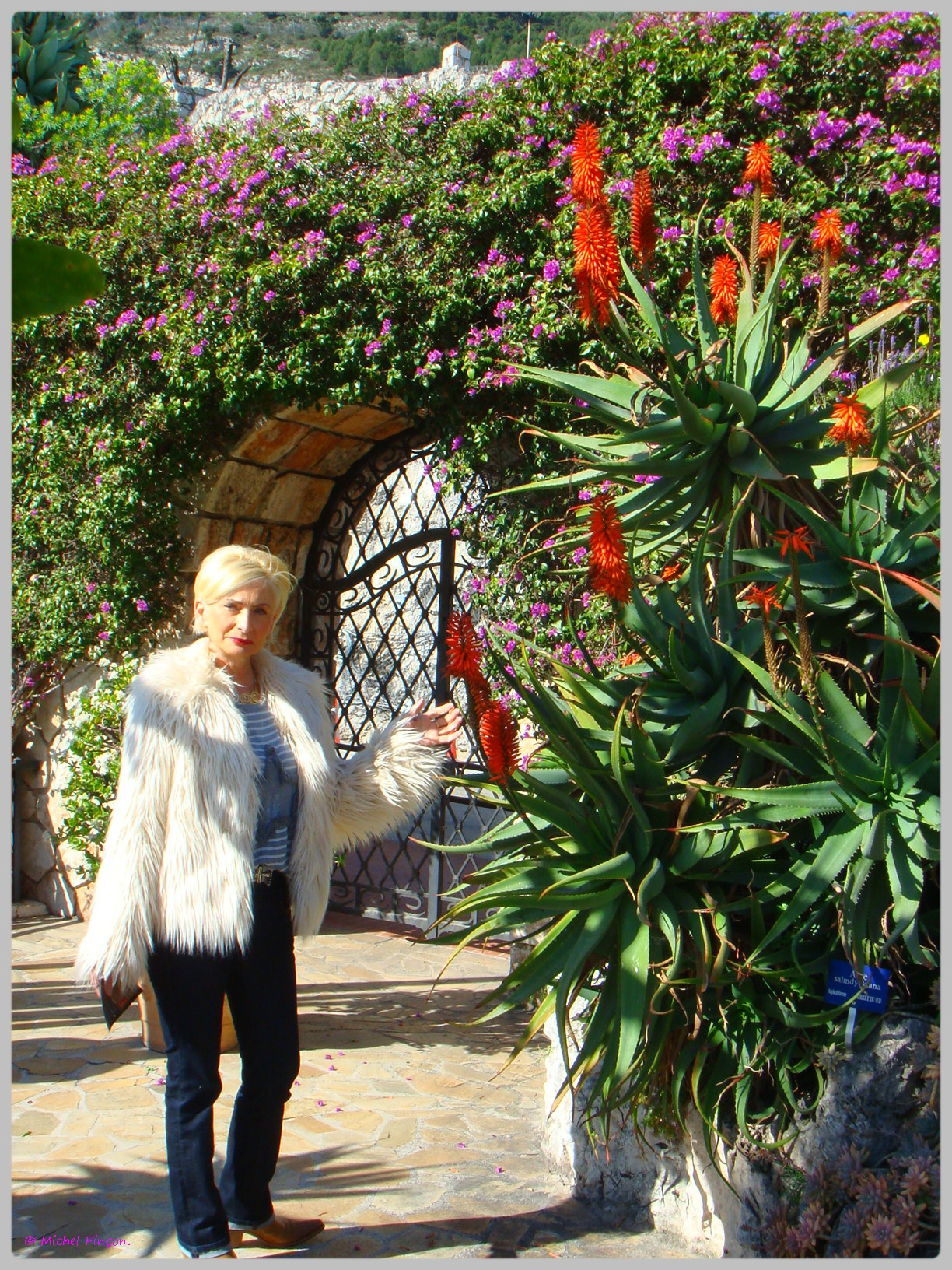 Ballade à Monte-Carlo, Monaco et environs.  633177DSC012194