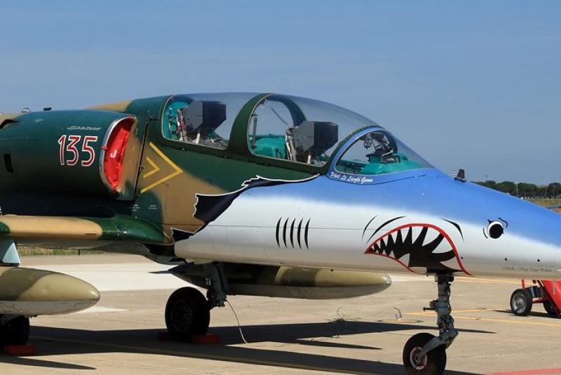 [EDUARD] L-39 ALBATROS Hungarian Sharks 1/72 638530L39135poksf2