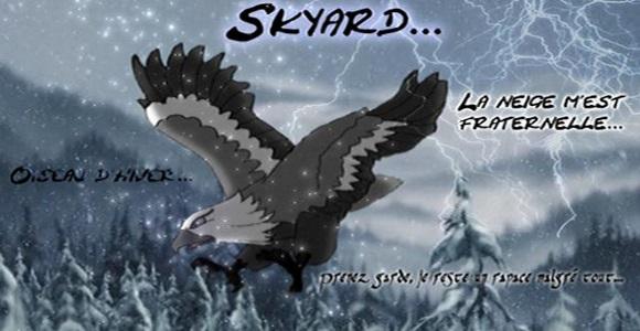 La Galerie de Skyard 642125SkyardSignature