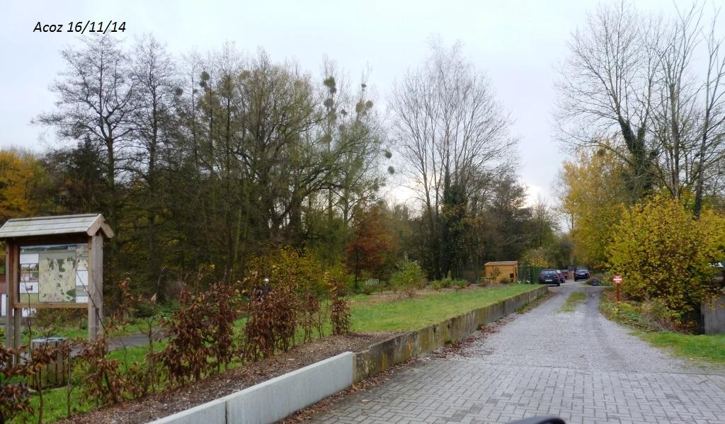 CR imagé de la balade du 16/11/14 autour de Dinant 648189698