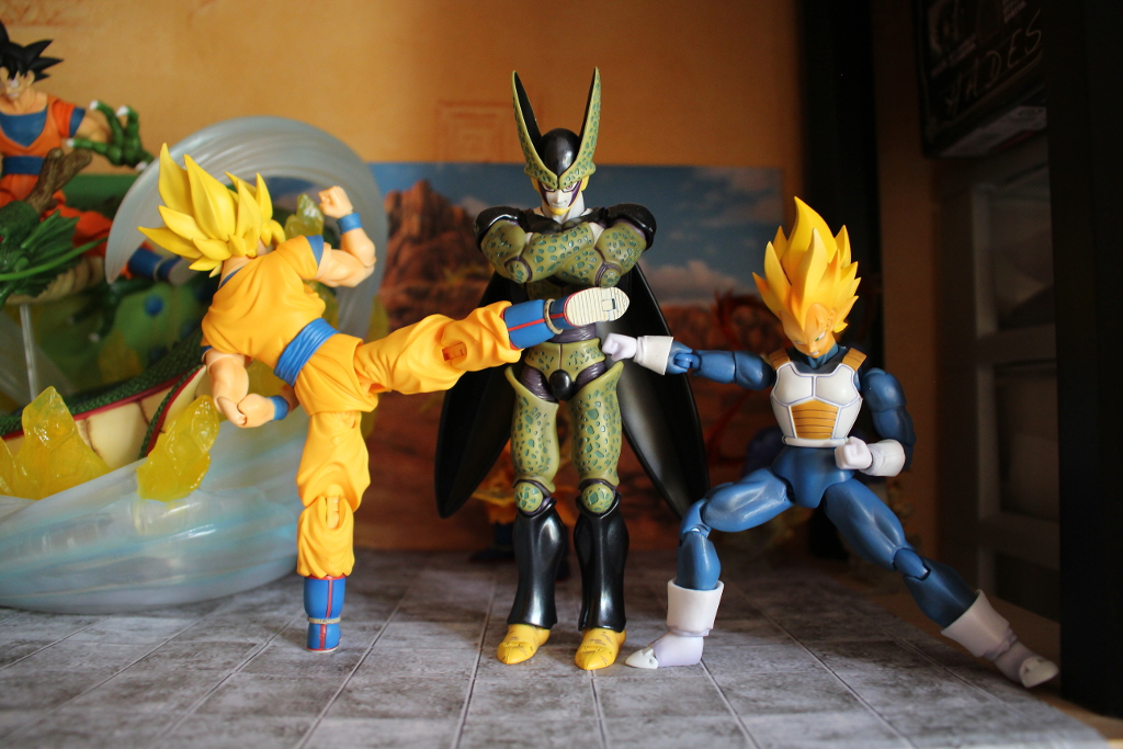 Another ...collection! (of Kheltal) 650164gokuVegeCell